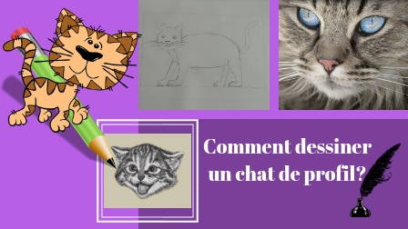 comment dessiner un chat de profil