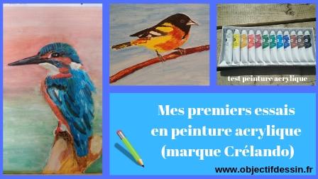 test peinture acrylique Lidl