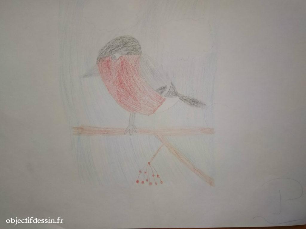 oiseau P