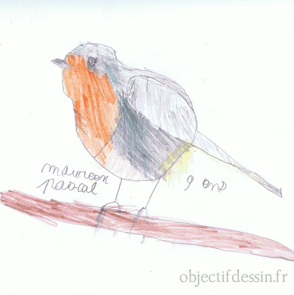 dessin oiseau Maureen
