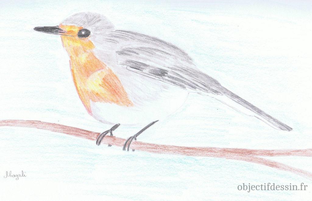 dessin oiseau magali