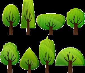 dessin facile arbre