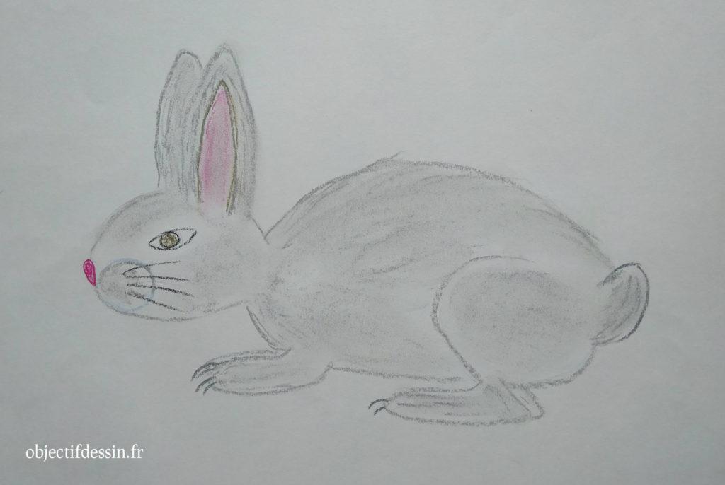 dessin lapin E