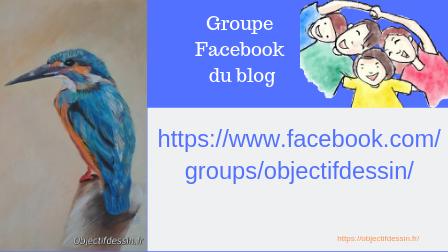 groupe facebook objectif dessin