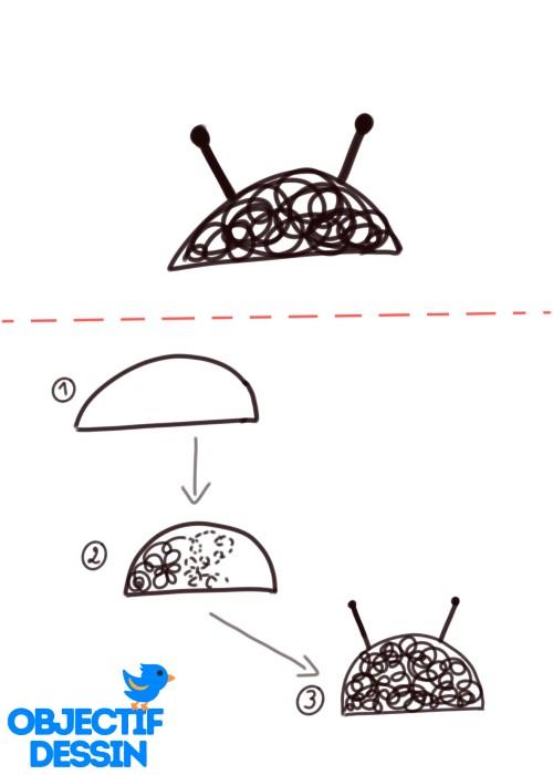 coccinelle spirale tête