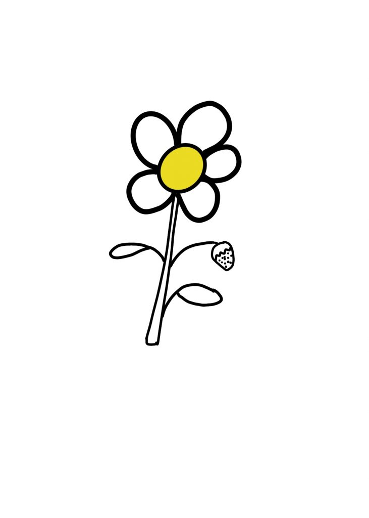 Couleur Fleur Fraise (1)