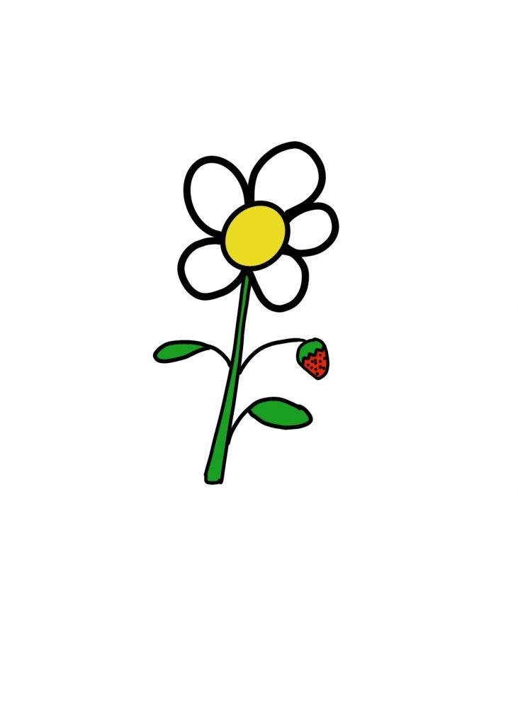 Couleur Fleur Fraise (3)