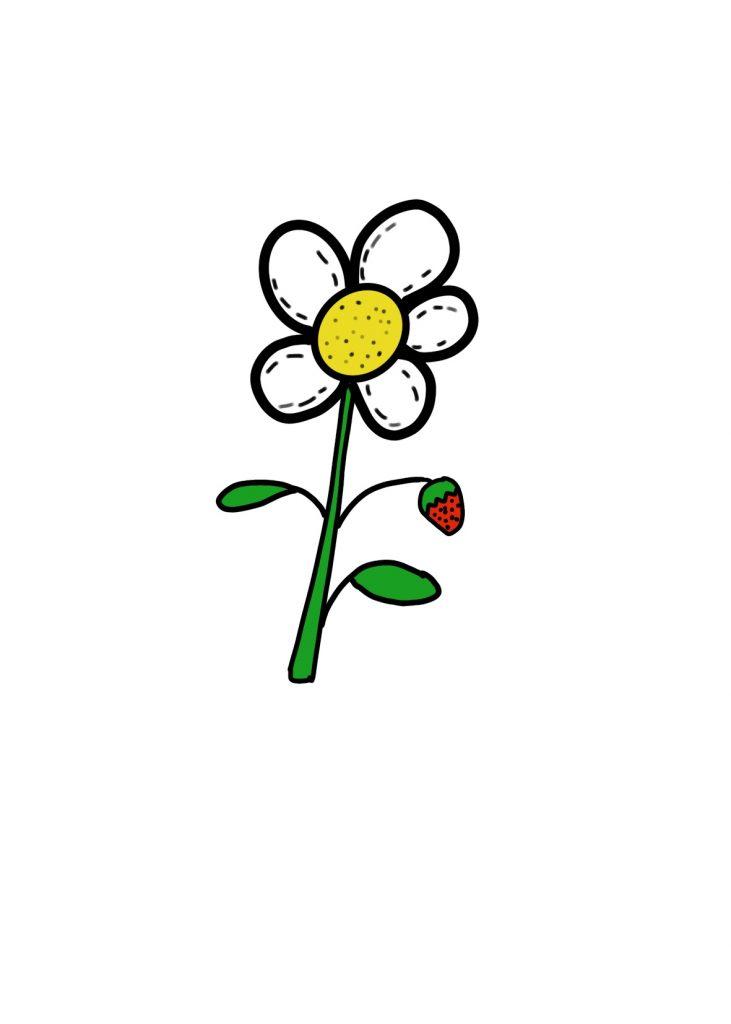 Couleur Fleur Fraise (4)