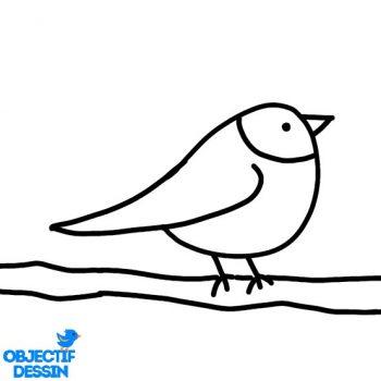 Dessin Oiseau Sur Branche (11)