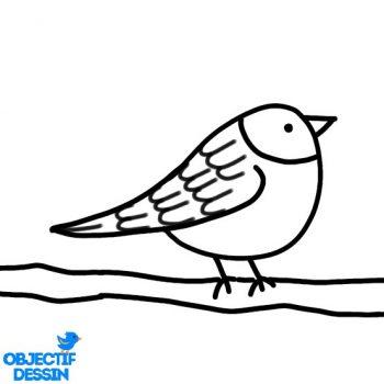Dessin Oiseau Sur Branche (12)