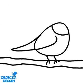 Dessin Oiseau Sur Branche (7)