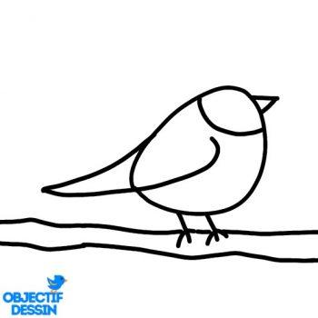 Dessin Oiseau Sur Branche (8)