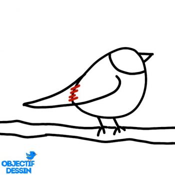 Dessin Oiseau Sur Branche (9)