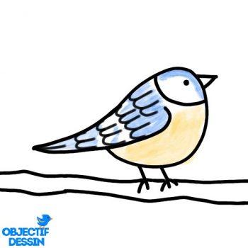 Dessin Oiseau Sur Branche Facile (13)