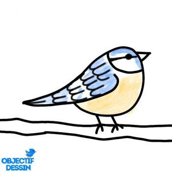 Dessin Oiseau Sur Branche Facile (15)