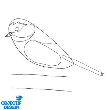 Dessiner Un Oiseau (11)