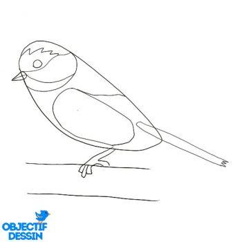 Dessiner Un Oiseau (12)