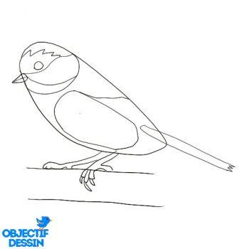Dessiner Un Oiseau (14)