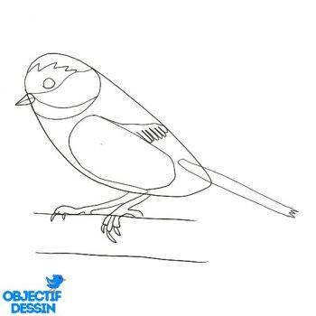 Dessiner Un Oiseau (16)