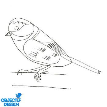 Dessiner Un Oiseau (19)