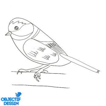 Dessiner Un Oiseau (21)