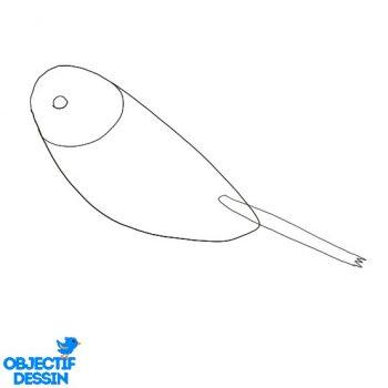 Dessiner Un Oiseau (4)