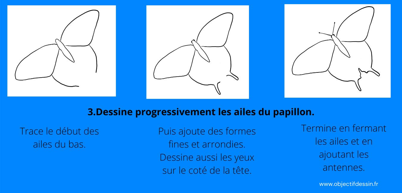 Pas A Pas Complet Dessin Facile Papillon (2)