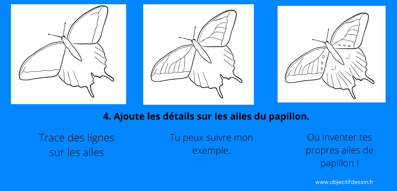 Pas A Pas Complet Dessin Facile Papillon (3)